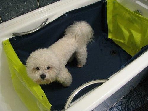 помыть собуку, но не испачкать ванну