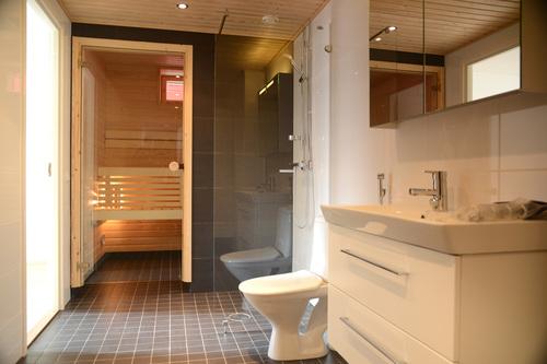 sauna-v-vannoy-02