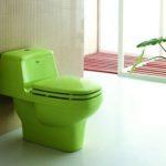 Зеленый унитаз